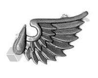 Blood Angels Terminator Wing Symbol