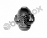 Primaris Space Marines Intercessors Head A