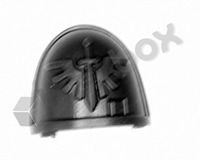 Deathwatch Veterans Chapter Shoulder Pad - Dark Angels