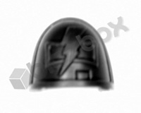 Deathwatch Veterans Chapter Shoulder Pad - White Scars