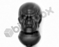 Genestealer Cults Neophyte Hybrids 4th Generation Head B