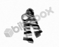 Primaris Space Marine Aggressors Purity Seal D