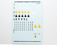 Salamanders Transfer Sheet